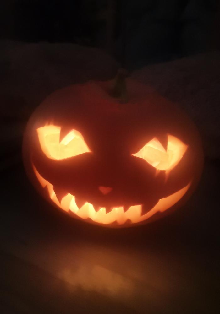Halloweeni isetehtud kõrvits
