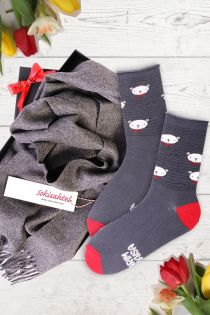 Alpakavillast halli salli ja PUHH sokkidega kinkekarp parimale vanaisale | Sokisahtel