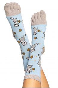 Хлопковые носки с пальцами для мужчин и женщин с узором в виде енотов RACOON | Sokisahtel