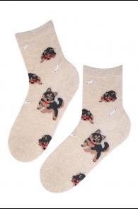WOOF beežid puuvillased sokid koertega | Sokisahtel